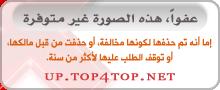 873fe3bb3 منتدى الأسهم - اكاديمية احتراف الأسهم السعوديه